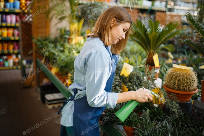 Gardener takes care of plants, shop for gardening