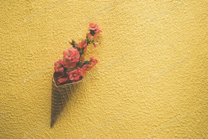 Flowers in ice cream cone on yellow background