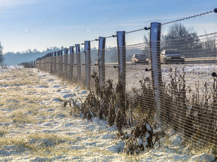 Wildlife fence along dutch highway