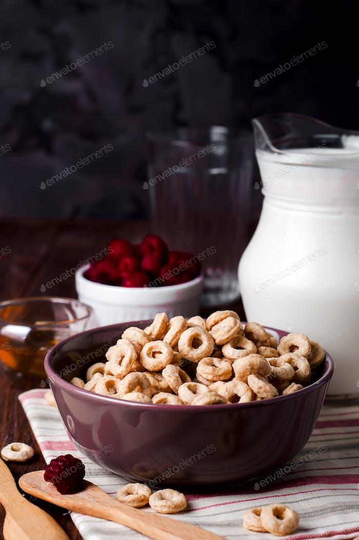 Gesundes Frühstück - Müsliringe in einer Schüssel mit Milch