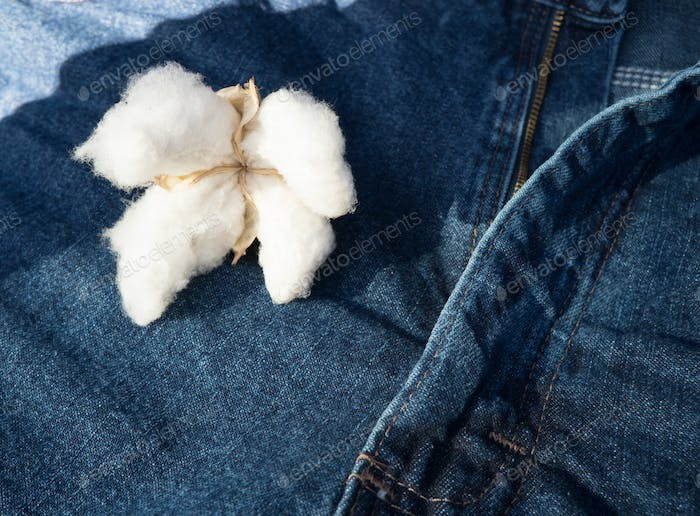 Cotton Sitting on Blue Jeans Made by Fiber