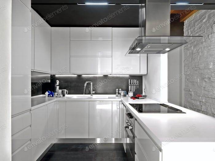 Interiors of the Modern Kitchen