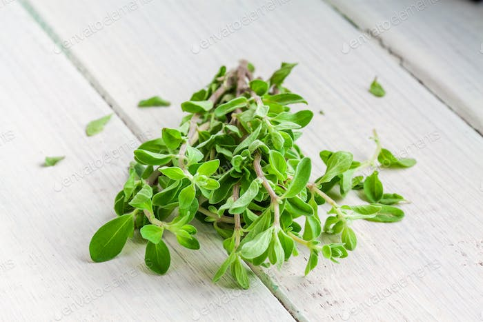 Green marjoram herb leaves on a wooden background