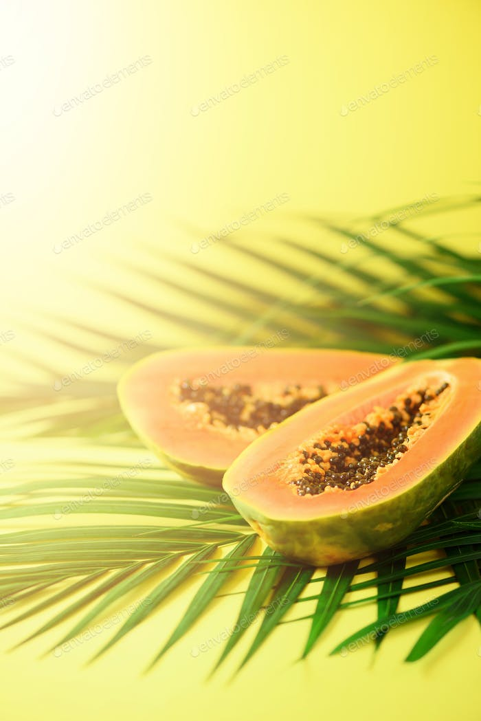 Exotic papaya fruit over tropical green palm leaves on yellow background. Copy space. Pop art design