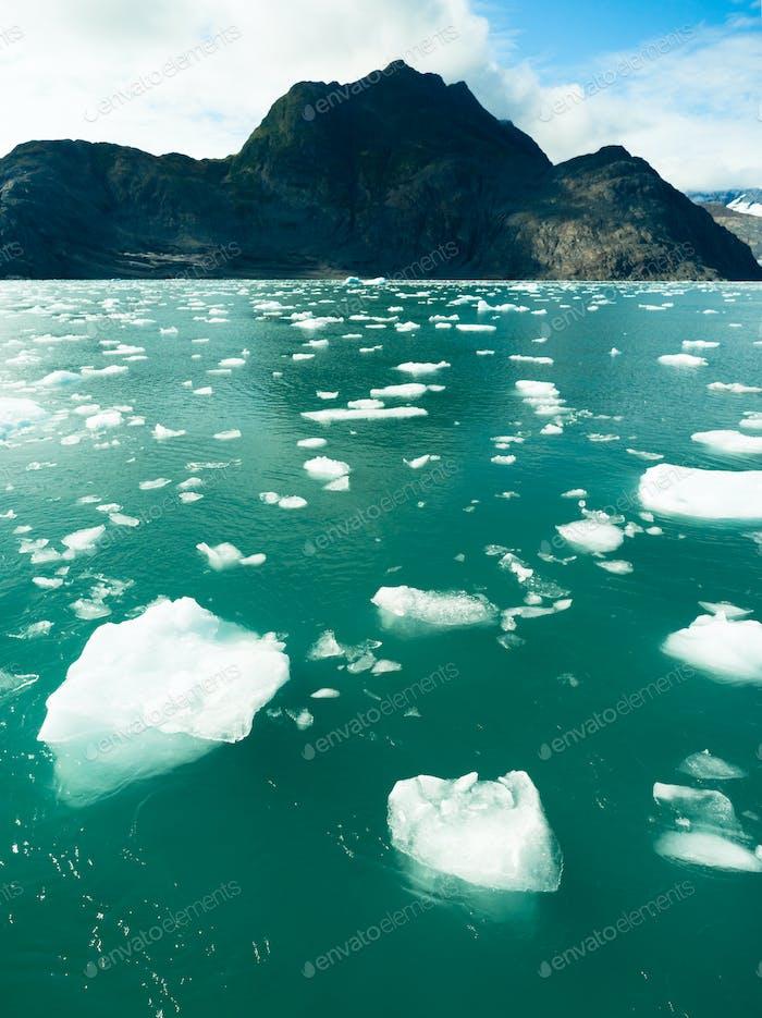 Floating Icebergs Pacific Ocean Aialik Bay Alaska North America