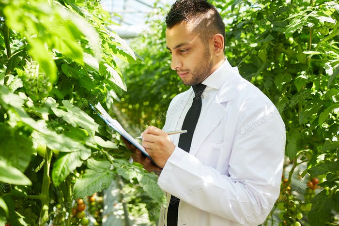 Greenhouse expert taking statistics about plants