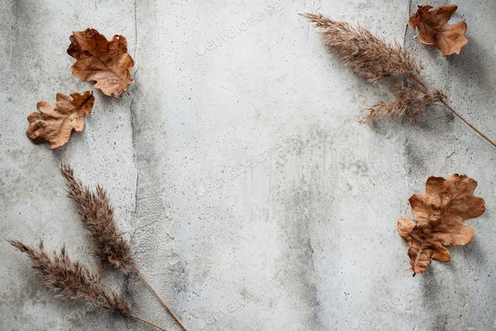 Thanksgiving or Halloween background with dried plants and fallen leaves