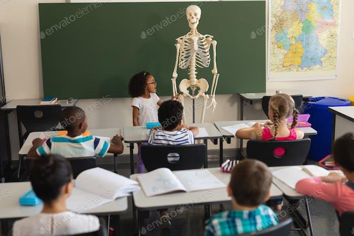 Rear view of little schoolgirl explaining human skeleton model in classroom of elementary school