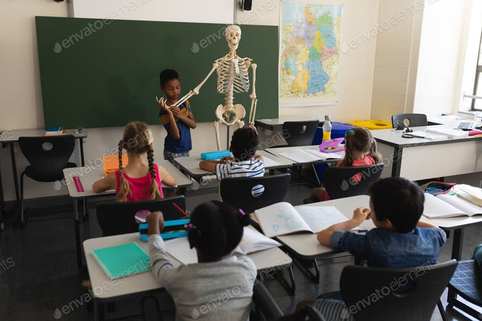 Rear view of schoolboy explaining human skeleton model in classroom of elementary school