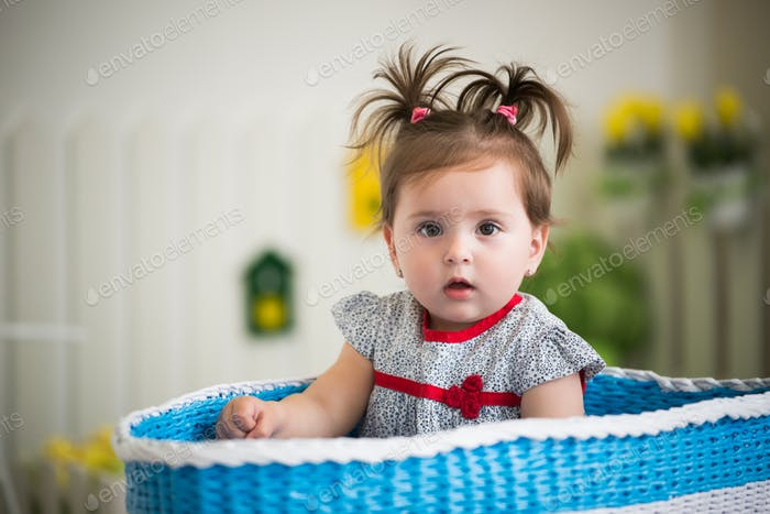 Beautiful little brown-eyed girl sits in basket