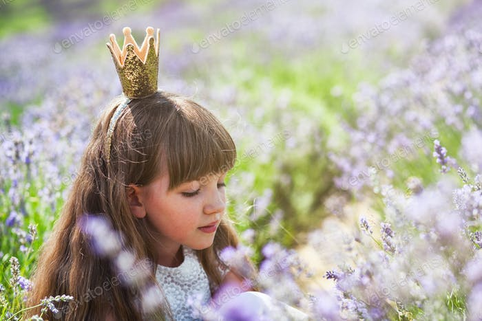 Princess child girl in crown on lavender field at summer day, happy childhood concept