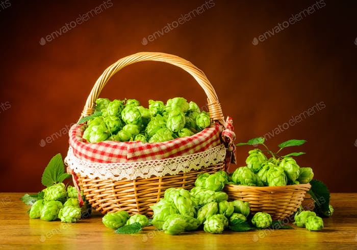 Basket with Green Hops