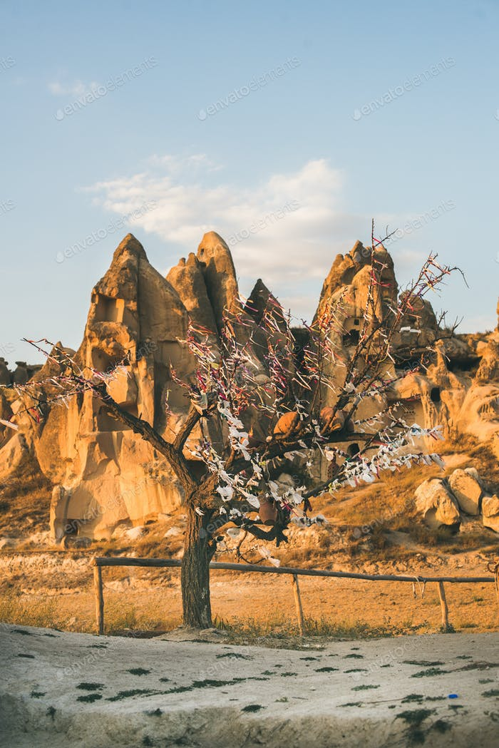 Natural volcanic rocks and tree with wishes, Turkey