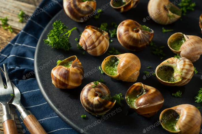 Fancy French Hot Escargot Appetizer