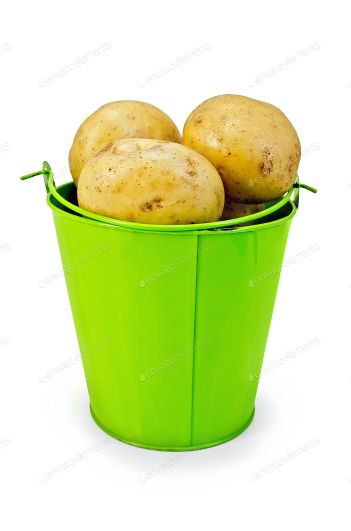 Potatoes yellow in a green bucket