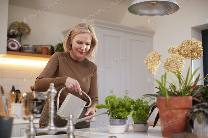 Mature Woman Watering And Caring For Houseplants In Kitchen At Home