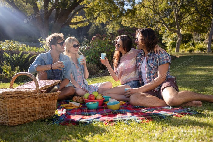 Happy friends having picnic in the park