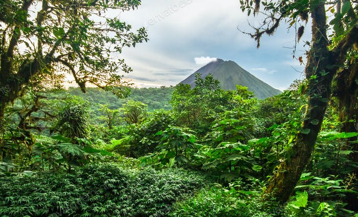 Volcan Arenal Among Dense Jungle in Costa Rica