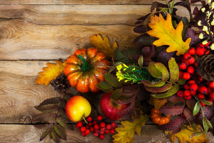 Fall arrangement with rowanberry and oak leaves, copy space