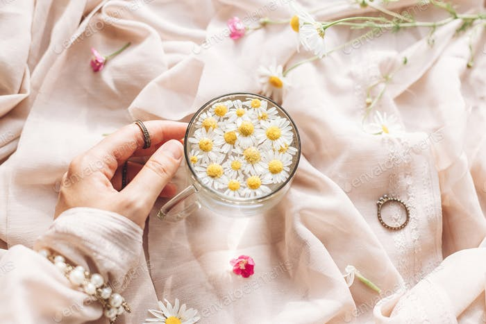 Hand with jewelry holding glass cup with daisy flowers in water