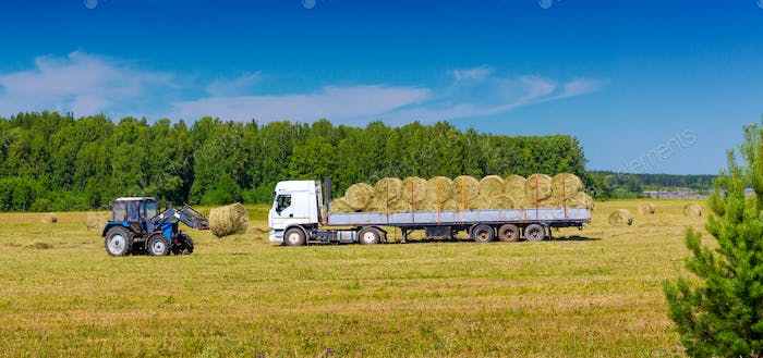 Loading Hay Bales Onto a Truck