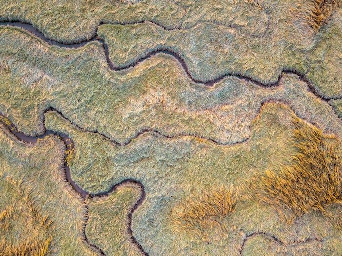 Aerial view of tidal marshland