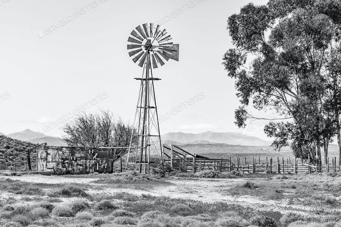 Windmill, dam and a kraal. Monochrome