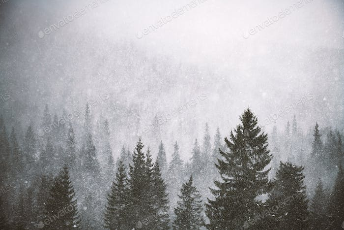 Snowstorm in winter mountains