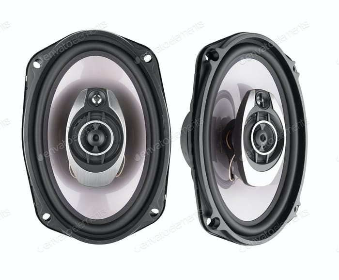Coaxial car speakers