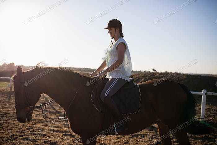 Female jockey riding horse at barn