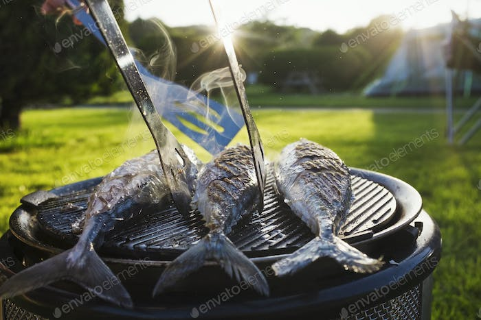 A small barbeque with three fresh mackerel fish on the grill, and a person using tongs to turn the