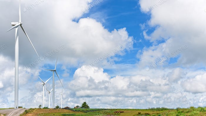 Landscape windmills field