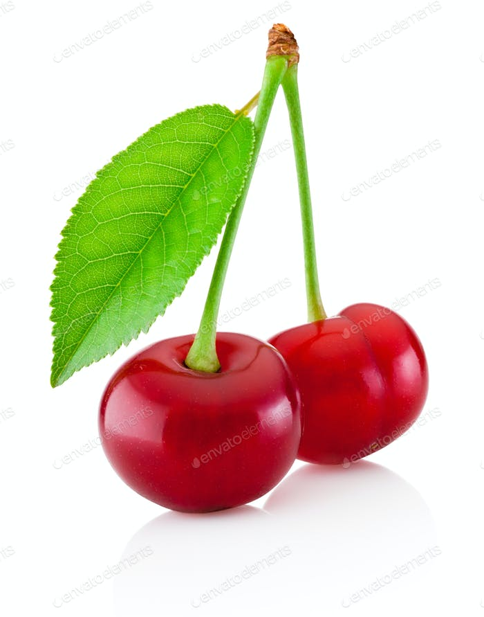 Two ripe cherries with leaf isolated on a white background
