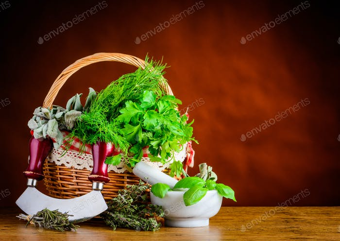 Basket Green Fresh Herbs