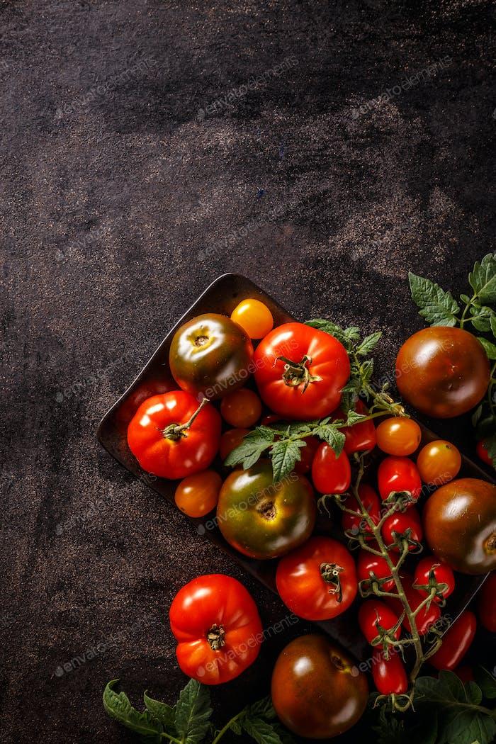 Varieties of colorful tomatos