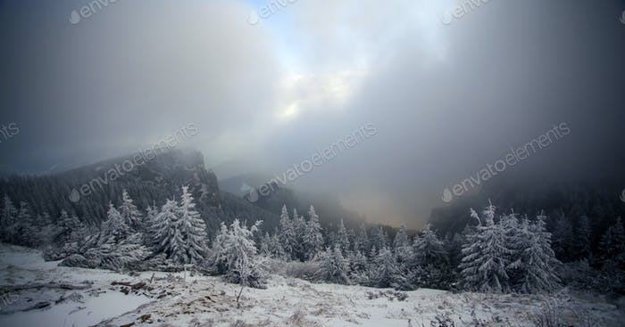 Trees covered with hoarfrost and snow in winter mountains - Chri