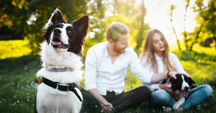 Pareja jugando con perros