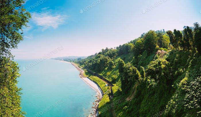 Batumi, Adjara Georgia. Beautiful Summer View From Botanical Gar