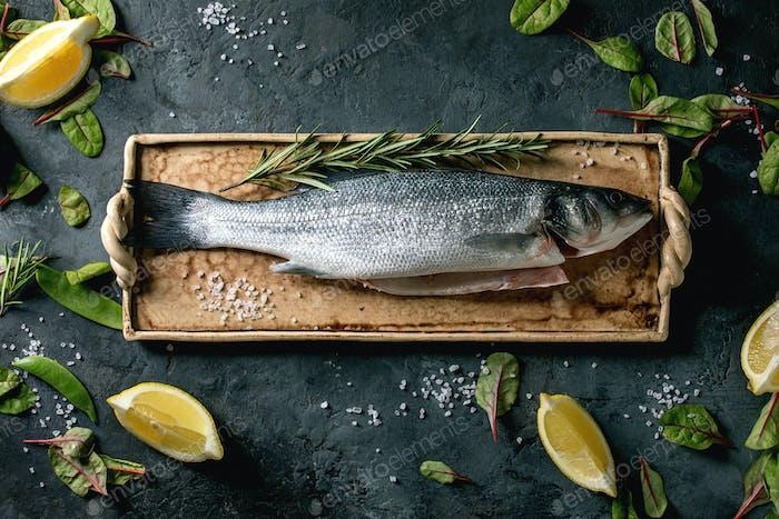 Raw uncooked fish sea bass