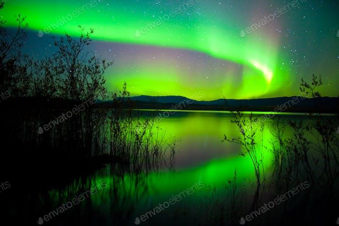 Intense Aurora borealis reflection Lake Laberge Yukon Canada