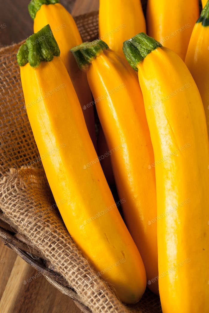 Raw Organic Yellow Zucchini Squash