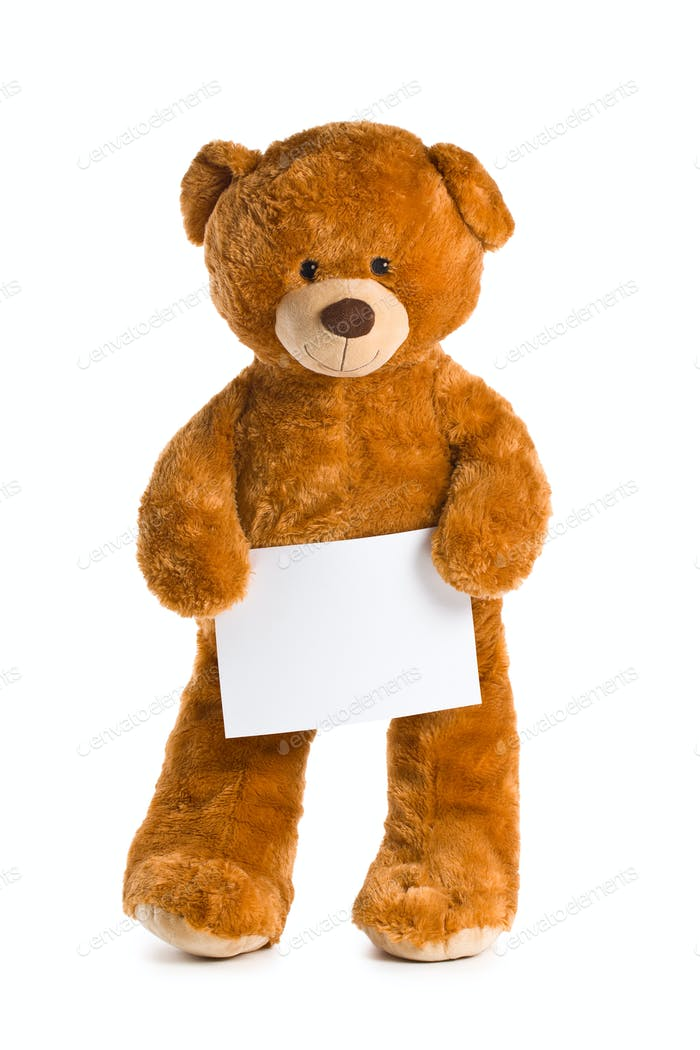 teddy bear with white board