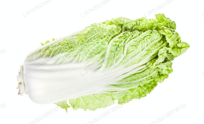 ripe green Napa cabbage isolated on white