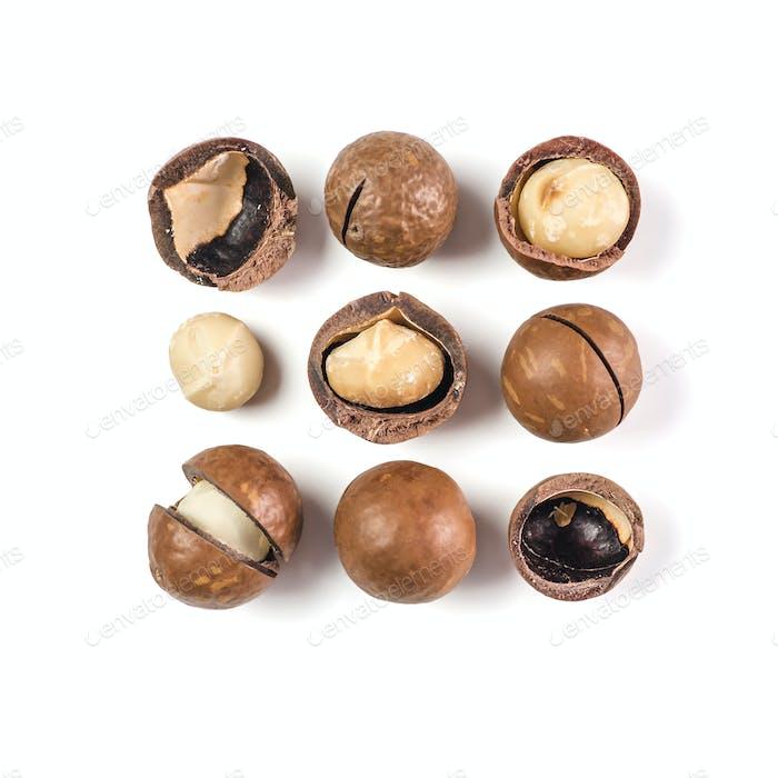 Macadamia isoliert auf weiß, Draufsicht