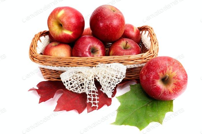 Reife, saftige Äpfel im Korb.