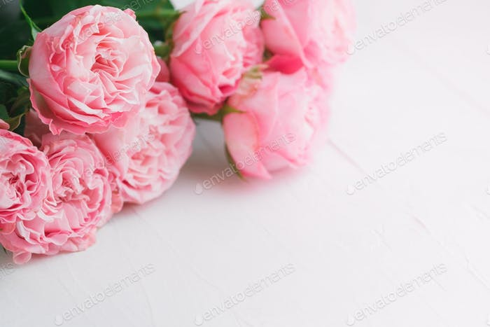Pink roses over white background. Copy space. The concept of wedding and Valentines day.