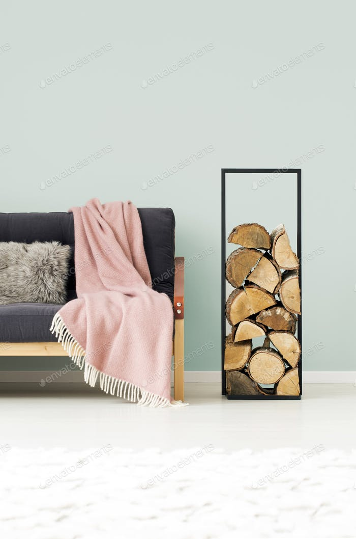 Logs of wood in apartment
