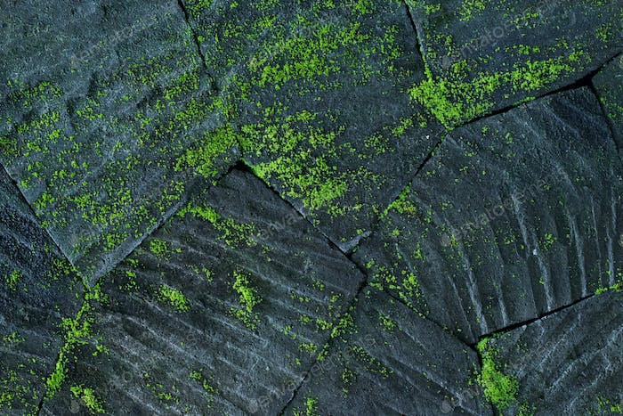 Black stone wall background with green moss and lichen. Nature texture. Empty place and copy space.