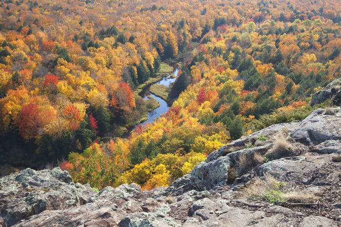 River in Michigan Surrounded by Trees in Fall Color Viewed from Above