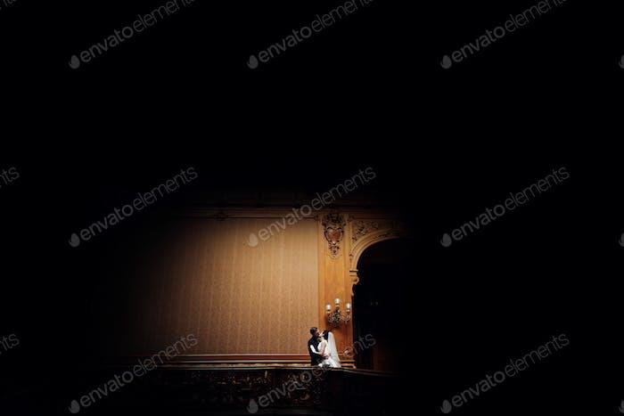 Элегантный великолепный невеста и стильный жених позирует в удивительной богатой комнате